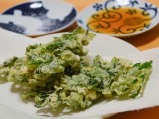 春菊の天ぷら。天ぷら粉なしでもサクサク♪箸が止まらない!【農家のレシピ帳】
