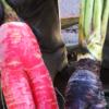 おもしろ野菜まとめ。ヘンテコで可愛い!【農家のレシピ帳】